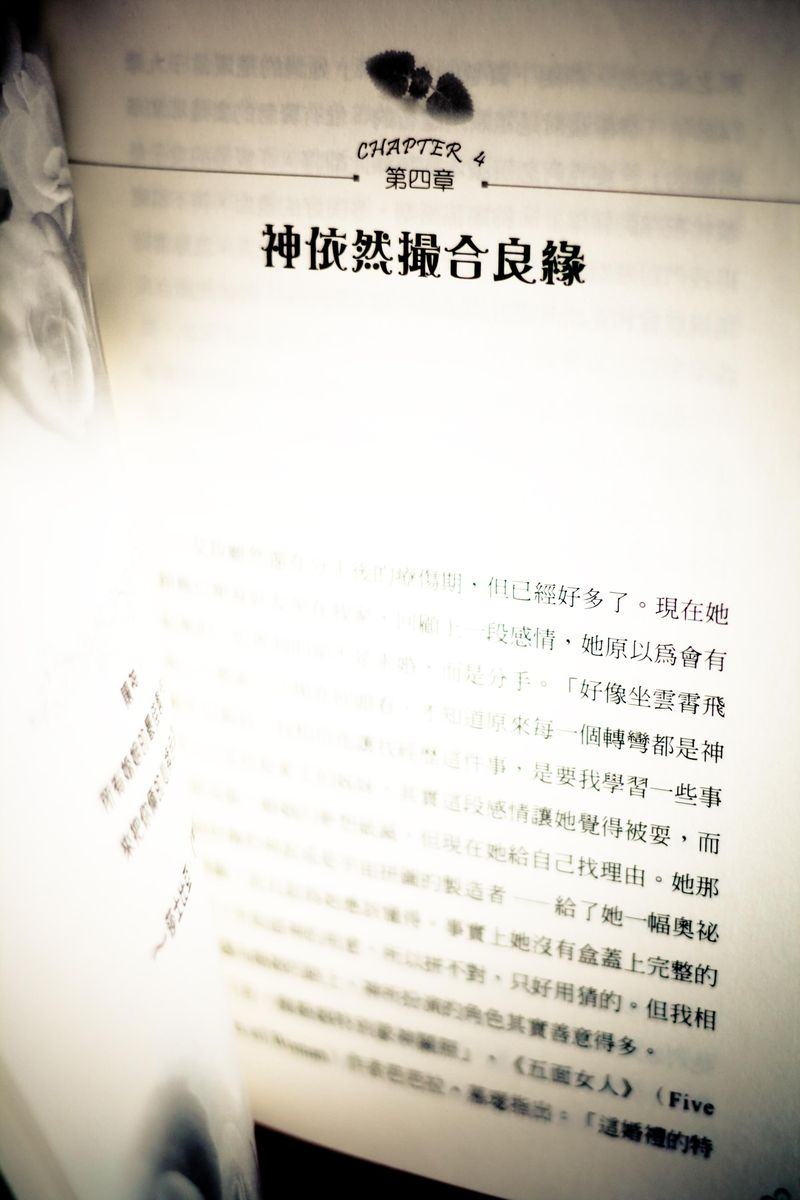 Book in Chinese-2
