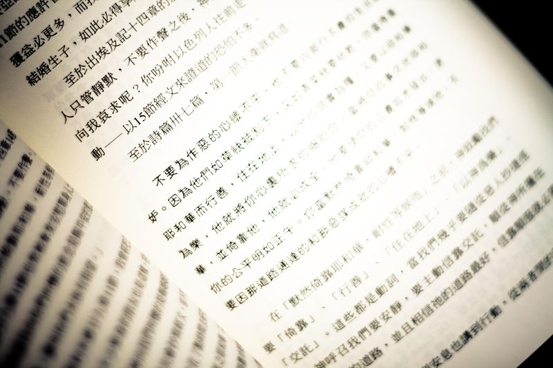 Book in Chinese-5